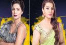 Shilpa Shinde Hits Back at Hina Khan and Rocky Jaiswal Over Adult Video Clip Row