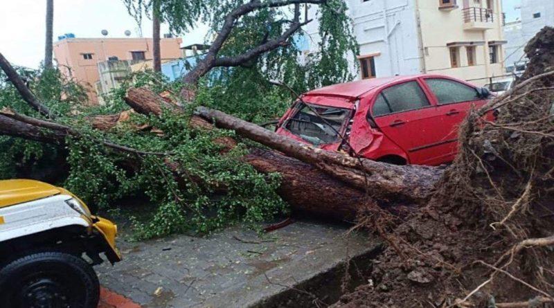 11 Killed and 79 lakh People Evacuated As Cyclone Gaja Hits Tamil Nadu