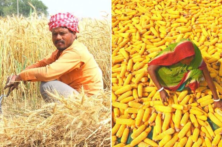 Creating a Pan India open market, the authorities contend that it will encourage competition and ensure higher prices for the farmers. But so far, the Government has done nothing to guarantee a fixed minimum support price, which is why the protest has continued.
