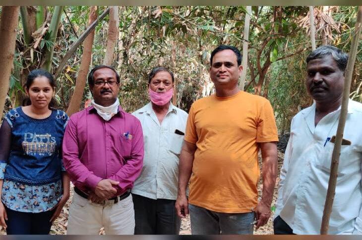 Rajshekhar-patil-bamboo-farming