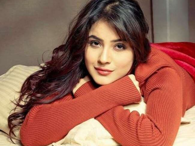Earlier last month Shehnaaz Gill wrapped up her Punjabi Film Honsla Rakh with Diljit Dosanjh and Sonam Bajwa, The film will hit the theatres on Dussehra this year.
